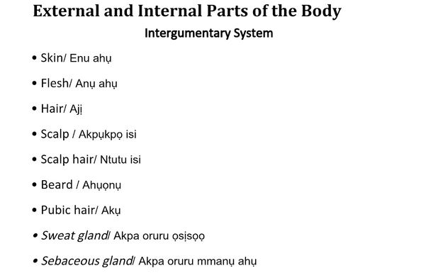 English Igbo Translation of Common Medical Terms NTAPi