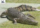 pd17906363-water_park_simulation_life_size_animatronic_animal_realistic_crocodile_models