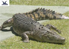 pd17906363-water_park_simulation_life_size_animatronic_animal_realistic_crocodile_models