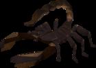 Scorpion_old